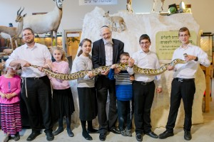Python Biblical Nat History