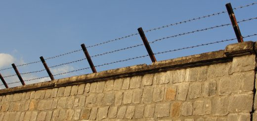 barbed wire wall